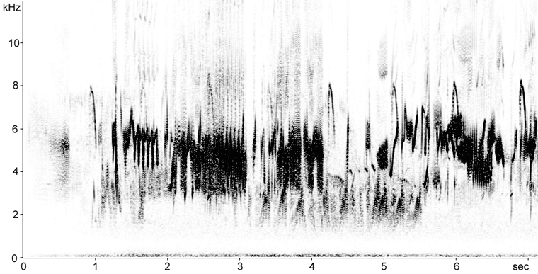 Sonogram of Calandra Lark aerial song