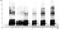 Carrion Crow sonogram � Fraser Simpson