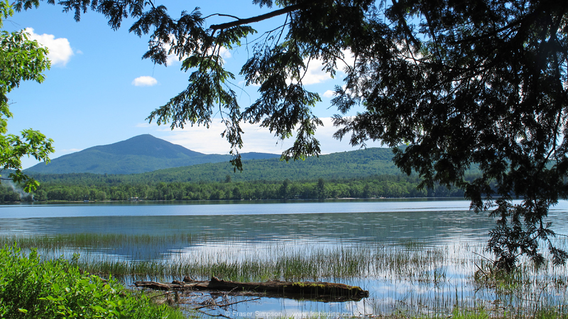 Webb Lake, Mount Blue State Park � Fraser Simpson  �  www.fssbirding.org.uk