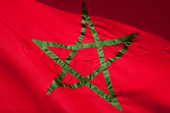 Moroccan flag detail