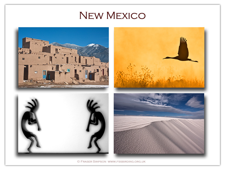 New Mexico photographs � Fraser Simpson