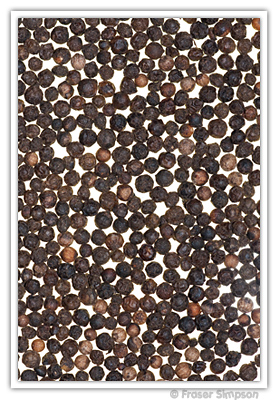Peppercorns � 2010 Fraser Simpson