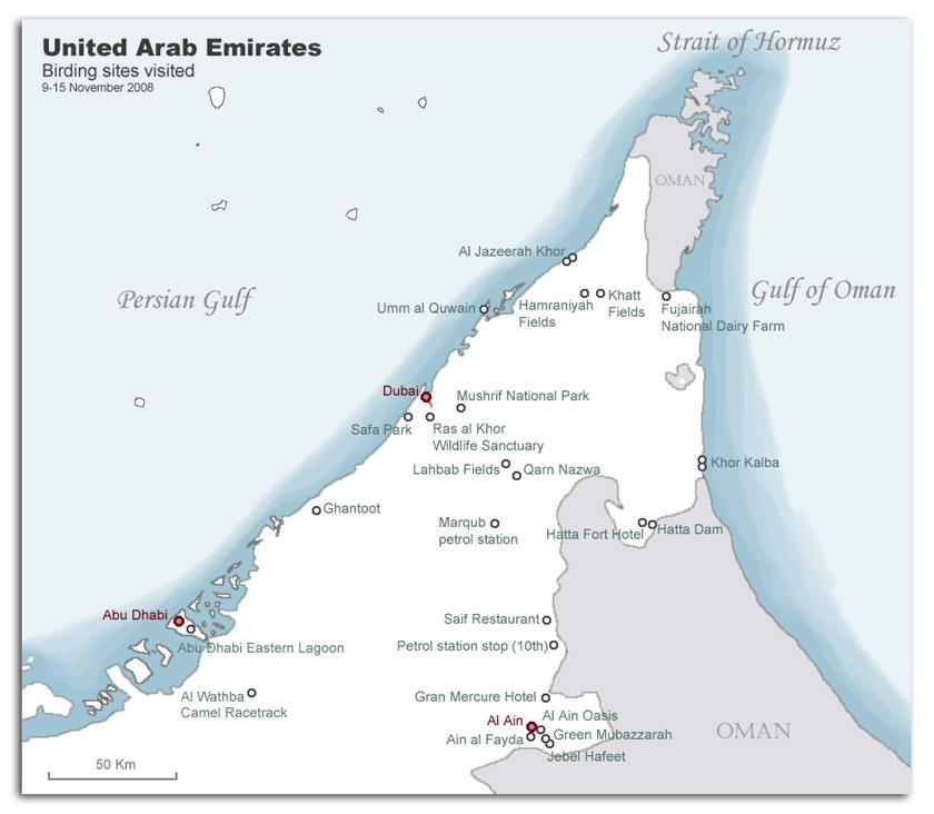 United Arab Emirates 2008 Birding Trip Report Frasers Birding Website