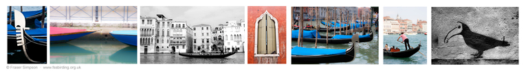Venice photo gallery � Fraser Simpson